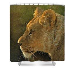 Pursuit Of Pride Shower Curtain