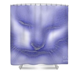 Digital Puss In Blue Shower Curtain by Linsey Williams