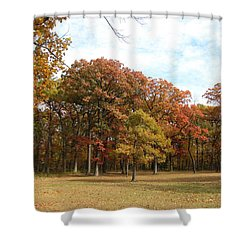Quiet Forest 2 Shower Curtain by Cedric Hampton