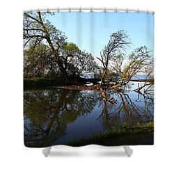 Quiet Reflection Shower Curtain by Davandra Cribbie