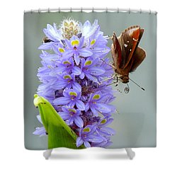 Quilling Butterfly Shower Curtain by Renee Trenholm