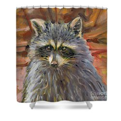 Shower Curtain featuring the painting Racoon by Donald Maier