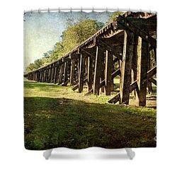 Railroad Bridge Shower Curtain by Tamyra Ayles