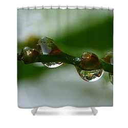 Shower Curtain featuring the photograph Rain Drops by Lynn Bolt