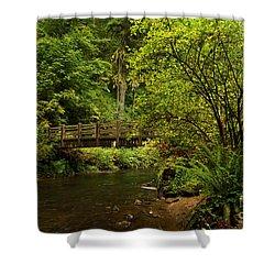 Rain Forest Bridge Shower Curtain by Adam Jewell