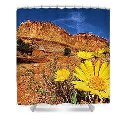 Rainbow Garden Shower Curtain