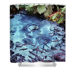 Shower Curtain featuring the photograph Rainbow Springs by Mark Dodd