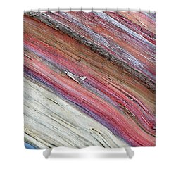 Shower Curtain featuring the photograph Rainbow Wood by Lisa Phillips