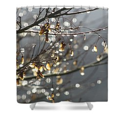 Raindrops And Leaves Shower Curtain