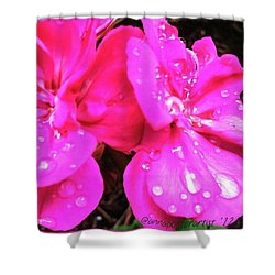 Raindrops On Azalea Blossoms Shower Curtain