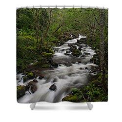 Rainier Forest Flow Shower Curtain by Mike Reid