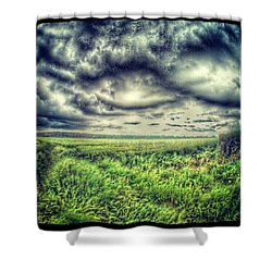 Rainy Day Shower Curtain by Vicki Field