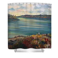 Rainy Lake Michigan Shower Curtain by Julie Brugh Riffey