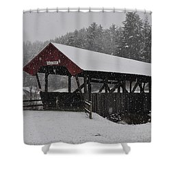 Randall Bridge Shower Curtain