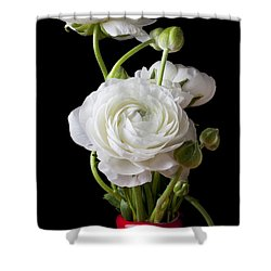 Ranunculus In Red Vase Shower Curtain by Garry Gay