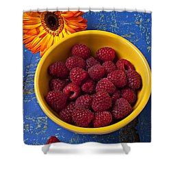 Raspberries In Yellow Bowl Shower Curtain by Garry Gay