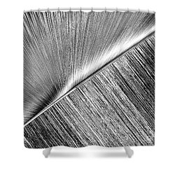 Rays And Lines. Black And White Shower Curtain by Ausra Huntington nee Paulauskaite