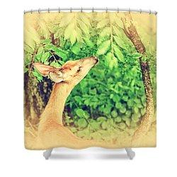 Reaching Shower Curtain by Karol Livote