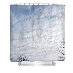 Shower Curtain featuring the photograph Reaching The Clouds by Pamela Hyde Wilson