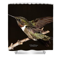 Shower Curtain featuring the photograph Ready Set Go Hummer by Randall Branham