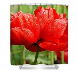 Shower Curtain featuring the photograph Red And Green by Fotosas Photography
