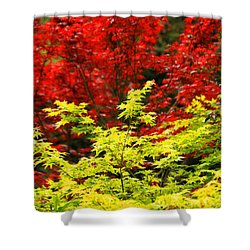 Red And Yellow Leaves Shower Curtain by James Eddy