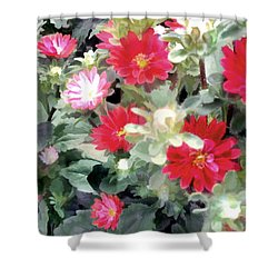 Red Asters Shower Curtain by Elaine Plesser