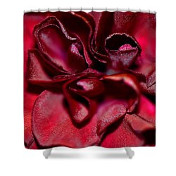 Red Carnation With Heart Shower Curtain by Sandi OReilly