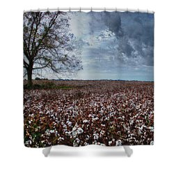 Red Cotton And The Tree Shower Curtain