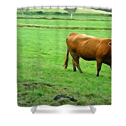 Shower Curtain featuring the photograph Red Cow by Charlie and Norma Brock