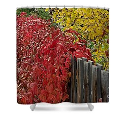 Red Fence Shower Curtain by Dorrene BrownButterfield