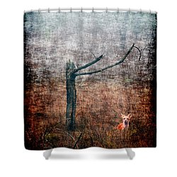 Shower Curtain featuring the photograph Red Fox Under Tree by Dan Friend