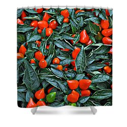 Red Hots Shower Curtain by Mary Machare