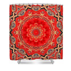Shower Curtain featuring the painting Red Kalideoscope by Carolyn Repka