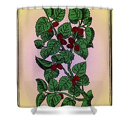 Red Mulberry Shower Curtain by Science Source