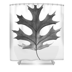 Red Oak Leaf Shower Curtain