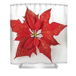 Red Poinsettia Flower Euphorbia Pulcherrima Shower Curtain