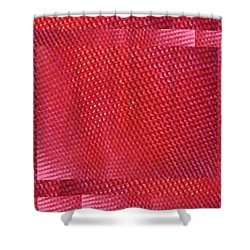 Red Riding Hood 2 Shower Curtain by Tim Allen