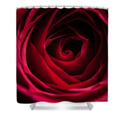 Shower Curtain featuring the photograph Red Rose by Matt Malloy