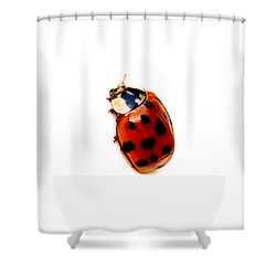 Red Spotted Ladbug White Background Shower Curtain by Tracie Kaska