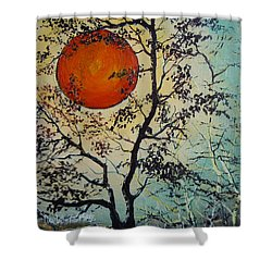 Shower Curtain featuring the painting Red Sun A Red Moon by Dan Whittemore