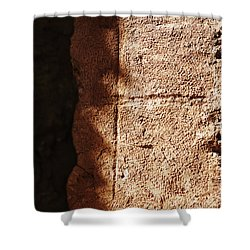 Red Texture Shower Curtain