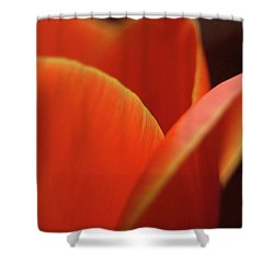 Shower Curtain featuring the photograph Red Tulip by Jeannette Hunt