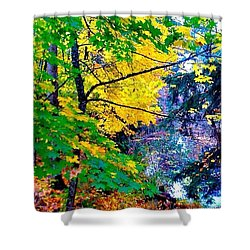 Reed College Canyon Fall Leaves II Shower Curtain by Anna Porter