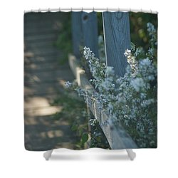 Reedsburg Dam Shower Curtain