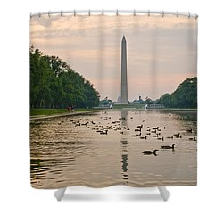 Reflecting Pool And Ducks Shower Curtain