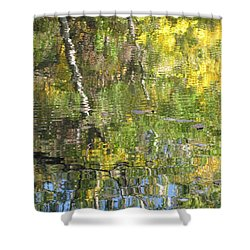 Reflections In Paradise 1 Shower Curtain by Anita Burgermeister