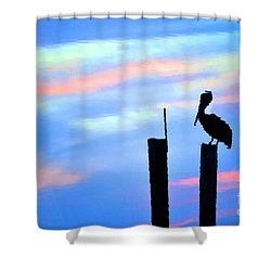 Shower Curtain featuring the photograph Reflections In Water With Pelican by Dan Friend