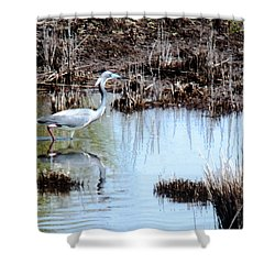 Reflections Of A Blue Heron Shower Curtain