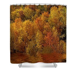 Reflections Of Autumn Shower Curtain by Carol Cavalaris